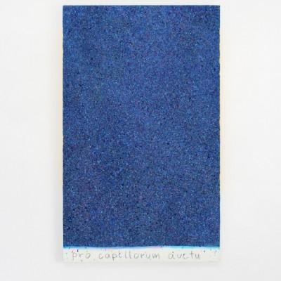 obraz na porost włosów, akryl,płótno, 110x65cm